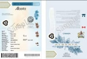 document reqiired for alberta birth certificate