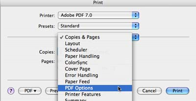 adobe reader cannot print document