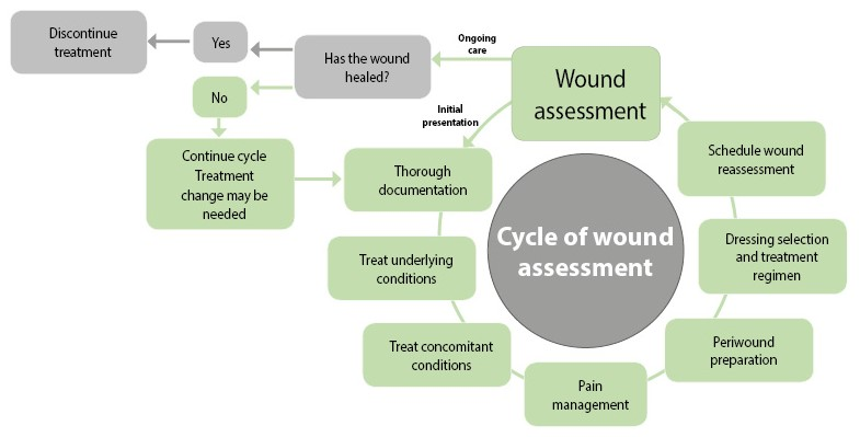 how to document skin assessment