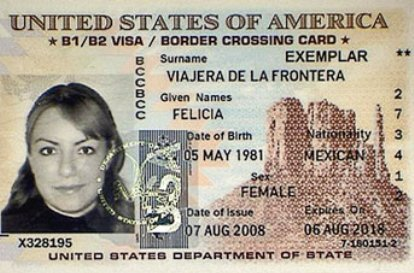 passport travel document number mexico